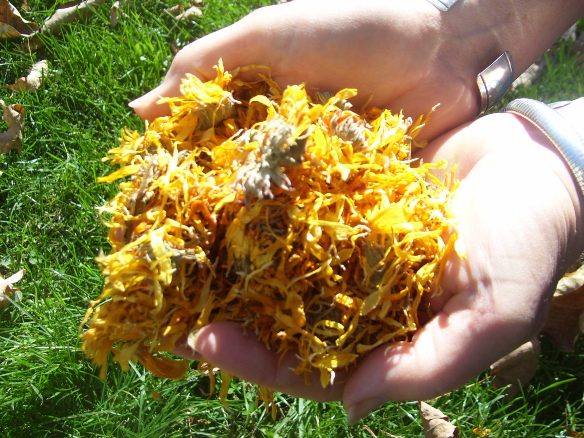 Calendula contains the ability to naturally nourish the skin. It also has antibacterial properties.