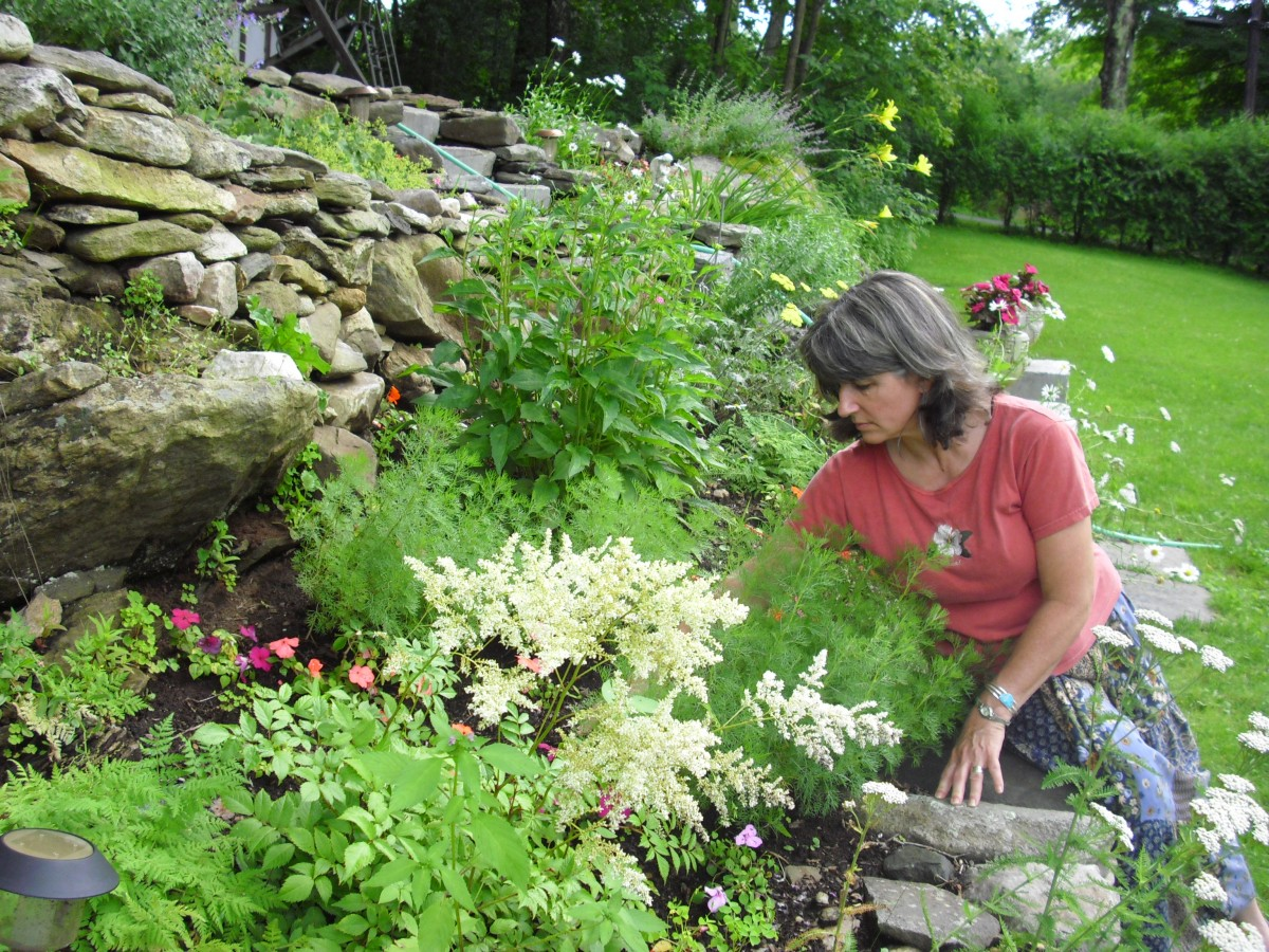 Herb gardening is an experience in real aromatherapy